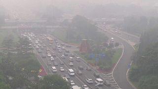 WMO-Bericht: Treibhausgase in der Atmosphäre steigen auf Rekordniveau