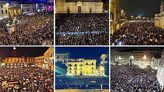 Sardinen-Protest in Italien: Salvini antwortet mit Kätzchen-Fotos