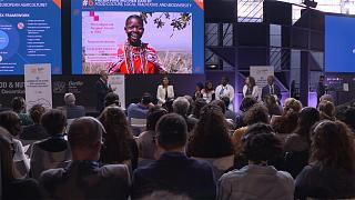 Foundation promotes sustainable food production