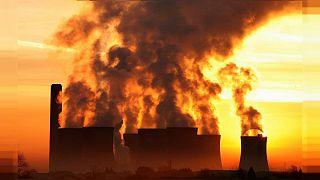 İklim krizi: Sera gazlarının emisyonlarını azaltmakta karbon dengeleme nedir? İşe yarıyor mu?