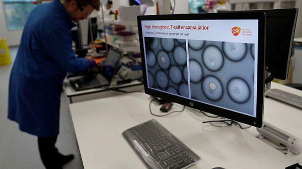 Portekizli vakıftan kanser araştırmalarına 1 milyon euroluk ödül