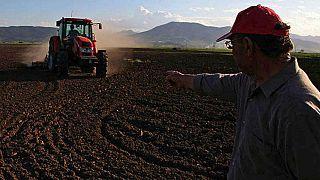 Πρόβλημα για τους Έλληνες αγρότες οι δασμοί των ΗΠΑ