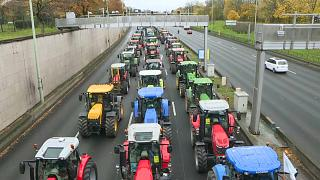 'Tractorada' en París para protestar por los bajos precios