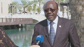 African business summit heralds new opportunities for regional trade