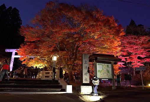 Япония: гармоничная осень