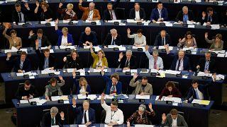 Il Parlamento europeo dichiara l'emergenza ambientale