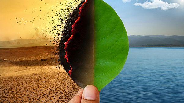 وضعیت اضطرار اقلیمی؛ اولین دغدغه نیمی از مردم اروپا آینده زمین است
