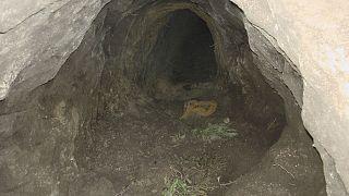 Álcázott, illegális alagutak a szerb-magyar határ alatt