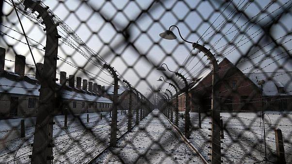 Auschwitz Kampı