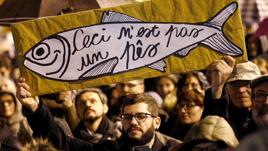 ایتالیا؛ اعتراض جنبش «ساردین» علیه راست افراطی در میلان