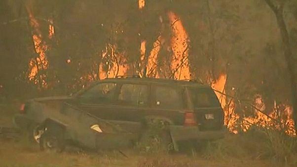Avustralya'da etkili olan orman yangınları kontrol altına alınamadı