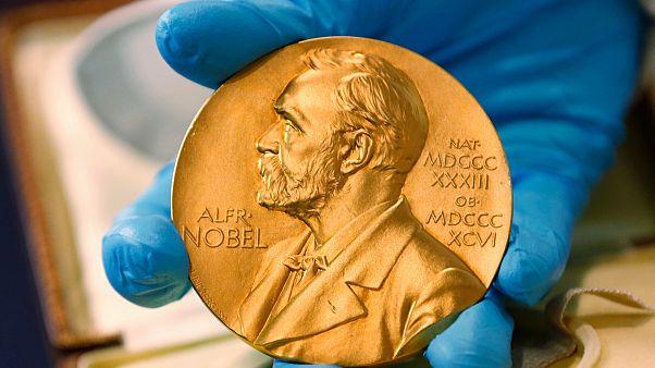 Nobel Edebiyat Ödülü komitesinin iki dış üyesi istifa etti