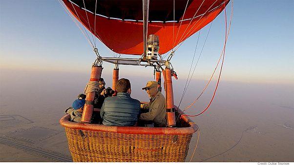 بالنسواری در کنار پرواز شاهین در صحرای دوبی
