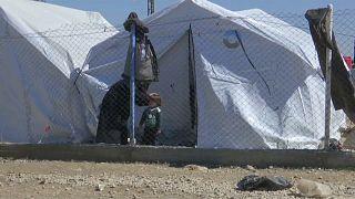 مخيم الهول سوريا
