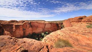 العثور على أسترالية لجأت إلى شرب مياه المستنقعات لمدة 14 يوماً في منطقة نائية