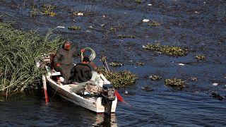 صيادون يتنقلون على متن قارب أثناء انخفاض المد على نهر النيل في حي شبرا الخيمة في القاهرة-02/12/219