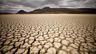 جنوب افريقيا بالظبط في غراف رينيت ، حيث تظهر شقوق بسبب الجفاف يوم 14/11/2019