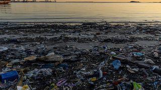 COP25: У выбросов есть цена