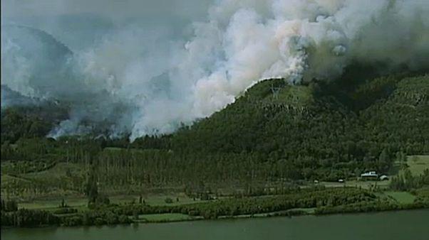 Ausztrál bozóttüzek