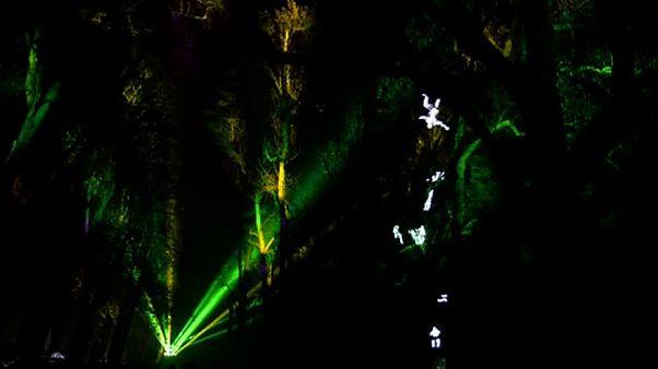 Lumiére Fesztivál: lyoni fényfestők megelevenedő víziói