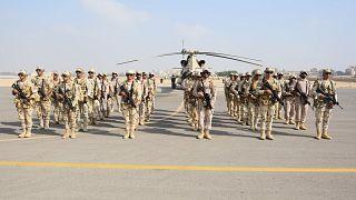صورة للجيش المصري رفقة الجيش الإماراتي خلال تدريب عسكري