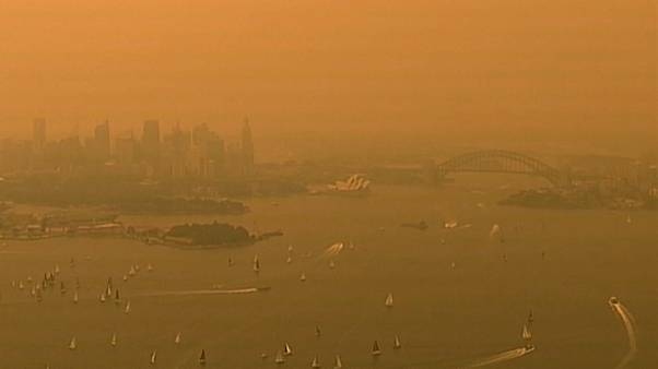 Австралия: лесные пожары подбираются к Сиднею