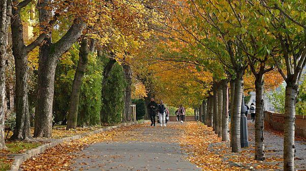 Az idei ősz volt a legmelegebb 1901 óta