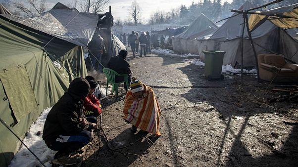 بوسنی؛ پناهجویان حاضر به ترک اردوگاه جنگلی «ووچیاک» نیستند