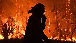 """Australia impotente davanti agli incendi: """"Attendiamo le piogge"""""""