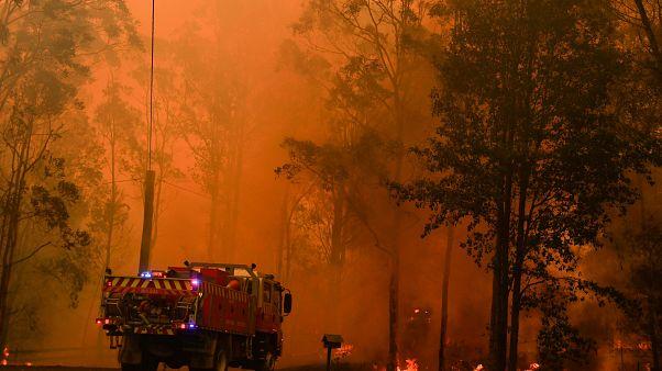 Brände wüten bei Sydney