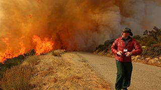 Kaliforniya orman yangınları, ABD