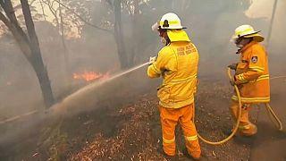 Австралия: огонь берёт города