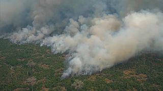 Brasil reclama más ayuda en la lucha contra la deforestación en la COP25