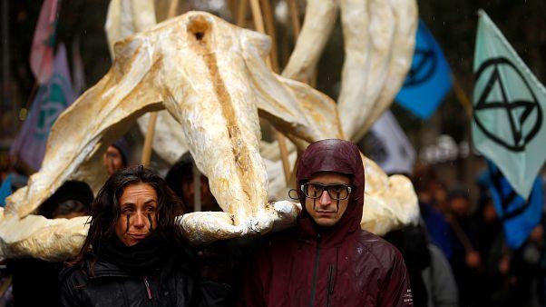 Manifestantes cargan el esqueleto de una ballena durante la manifestación en Madrid