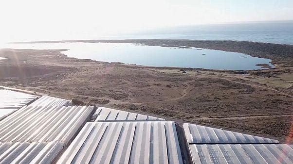 Los acuíferos cada vez más salinos amenazan 'la huerta de Europa'