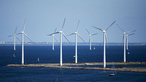 Copenhaga luta por recorde na neutralidade de emissões poluentes
