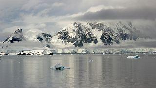 Antarktika'da keşif yapan bilim insanlarının beyninin küçüldüğü gözlemlendi