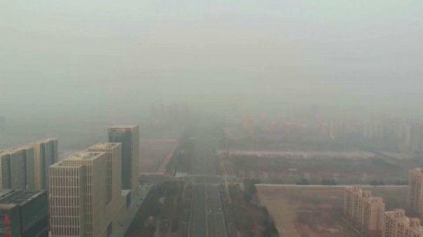 El CCPI 2020 refleja que ningún país está en la senda del 1,5 ºC