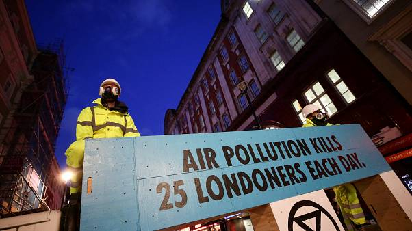 Pollution, plants and protests: Where do UK parties stand on Green issues?