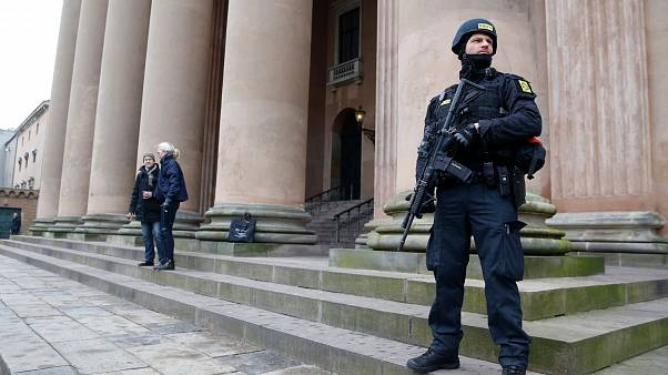 Danish police carried out raids around the country (File picture from 2016)