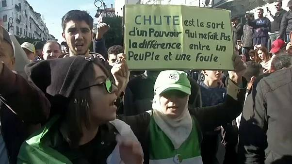 Алжир: протесты накануне голосования