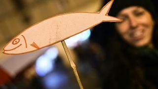 Cinque post per raccontare il movimento delle sardine