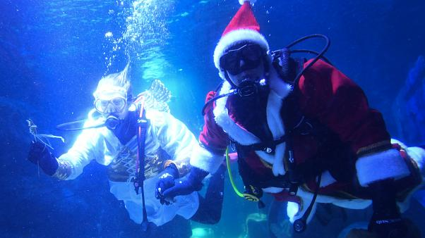 Морской Санта-Клаус и подводный ангел