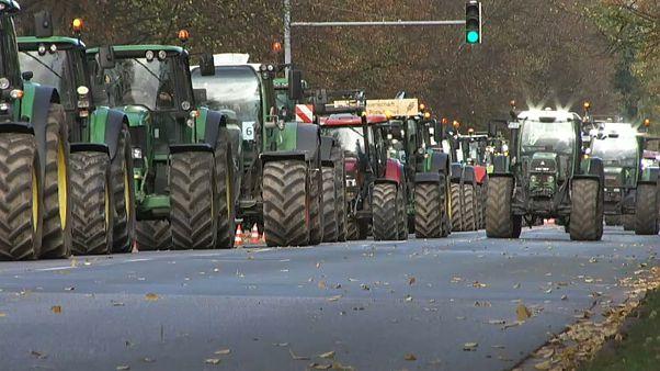 Lucros dos agricultores alemães em queda