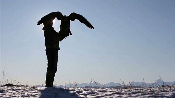 زنده نگه داشتن رسمی ۳ هزار ساله؛ مسابقات شکار با باز در قزاقستان آغاز شد
