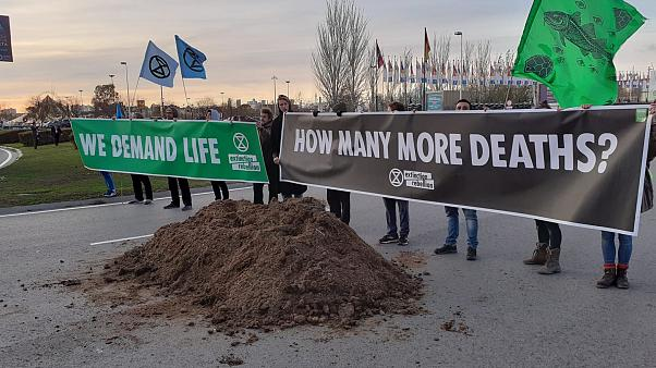 Frustration and horse manure on the last day of COP25