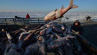 شاهد: الصيادون الصينيون يكرمون البحيرة وشباك الصيد بمناسبة إفتتاح الموسم