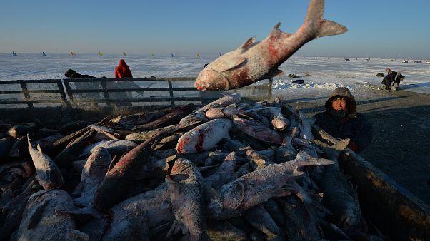 A kínai halász a jég hátán is megél