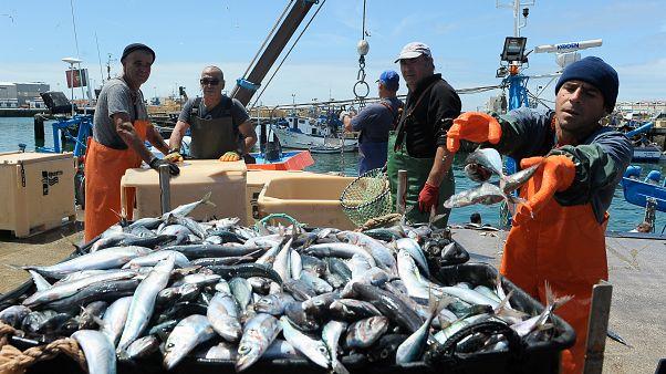 Aumento de 17% nas quotas de pesca para Portugal