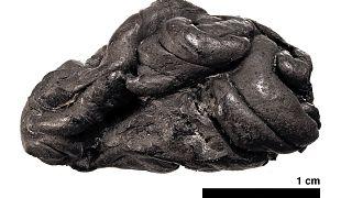 العلكة الممضوغة قبل 5700 عام